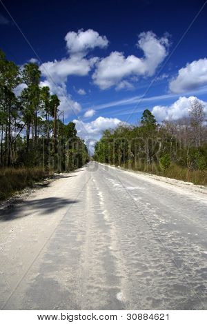 Big Cypress Backroad