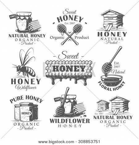 Set Of Vintage Honey Labels. Templates For The Design Of Emblems. Collection Of Honey Symbols: Bee,