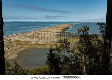 View Out To Dungeness Spit With Trees Framing The View , Covered With Driftwood On The Coast Of The