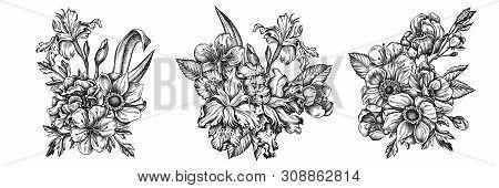 Flower Bouquet Of Black And White Anemone, Iris Japonica, Sakura Stock Illustration