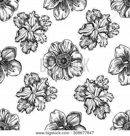 Seamless Pattern With Black And White Anemone, Iris Japonica, Sakura Stock Illustration