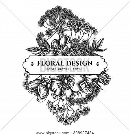 Floral Bouquet Design With Black And White Dog Rose, Valerian, Angelica Stock Illustration