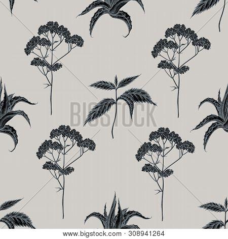 Seamless Pattern With Hand Drawn Stylized Aloe, Nettle, Valerian Stock Illustration
