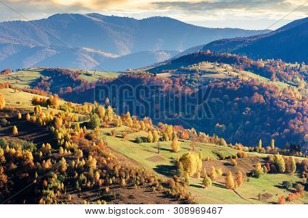 Beautiful Autumn Scenery Of A Countryside. Sunny October Afternoon Weather. Trees On Hills In Colorf