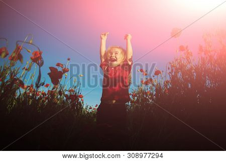 Happy Summer. Funny Kin In Poppy Field. Happy Child On Nature Background. Sunny Day. Perfect Weather