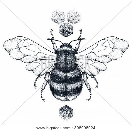 Honey Bee And Honeycomb Tattoo. Dotwork Tattoo. Symbol Of Diligence, Economy, Purity, Immortality, F