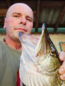 Fisherman with his catch. Monster Northern Pike - Esox Lucius. Harvest of fish pond. Aquaculture in Czech Republic. poster