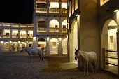Arabian horses in Souq Waqif Doha Qatar poster