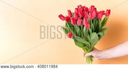 A Large Bouquet Of Red Tulips In A Mans Hand - Spring Flowers For The Holiday Of March 8. Banner. Co