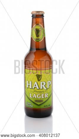IRVINE, CA - JANUARY, 11, 2015: A single bottle of Harp Lager. Harp is an Irish lager created in 1960 by the Guinness Brewing Company, brewed with pure water from the Cooley Mountains.