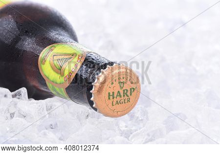 IRVINE, CA - AUGUST 26, 2016: Closeup of a single bottle of Harp Lager on a bed of ice. Harp is an Irish lager created in 1960 by the Guinness Brewing Co., brewed with water from the Cooley Mountains
