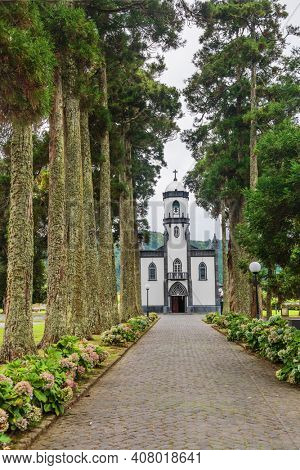 Beautiful church of Sao Nicolau (Saint Nicolas) with an alley of tall trees and hydrangea flowers in Sete cidades on Sao Miguel island, Azores, Portugal