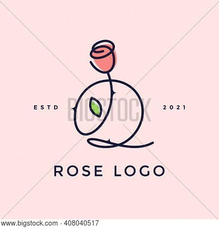 Beauty And Charming Simple Illustration Logo Design Initial Q Combine With Rose Flower.