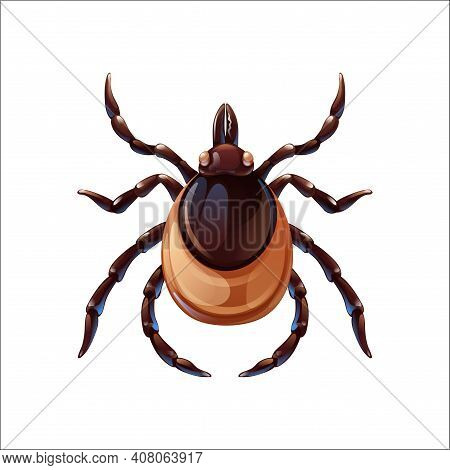 Mite Bug Art, Insect Control. Vector Illustration