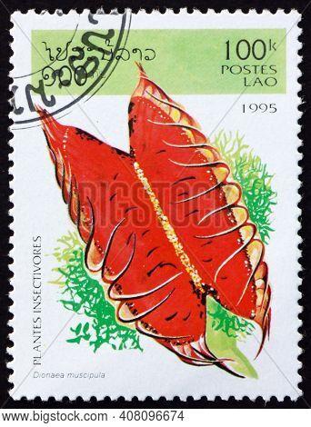 Laos - Circa 1995: A Stamp Printed In Laos Shows The Venus Flytrap, Dionaea Muscipula, Is A Species