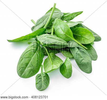 Spinach Leaves Isolated On White Background. Various Spinach Leaf Macro. Top View. Flat Lay.
