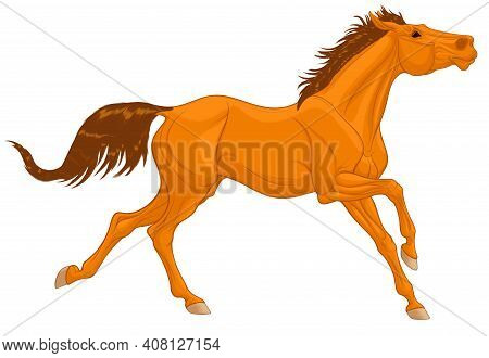 Chestnut Thoroughbred Horse Galloping With Its Head Up. Running Stallion Laid Its Ears Back. Vector