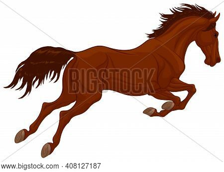 Jumping Stallion Arched Its Neck. Dark Brown Leaping Horse Pricked Up Its Ears. Vector Illustration,