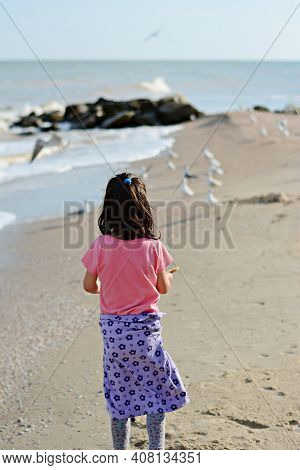 A Child (little Girl) Feeds The Birds On The Seashore (ocean). Sandy Seashore With Stones And Sea Gu