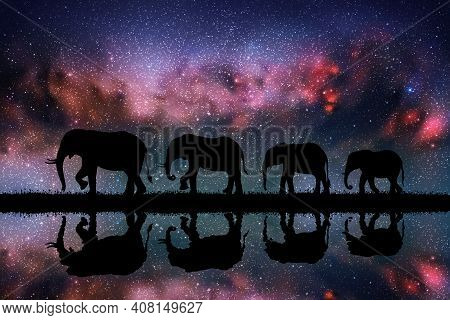 Elephant Family At Night. Animal Silhouettes. Starry Sky And Milky Way