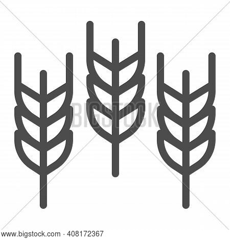 Spikelets Line Icon, Thanksgiving Day Concept, Wheat Ears Sign On White Background, Three Ear Icon I