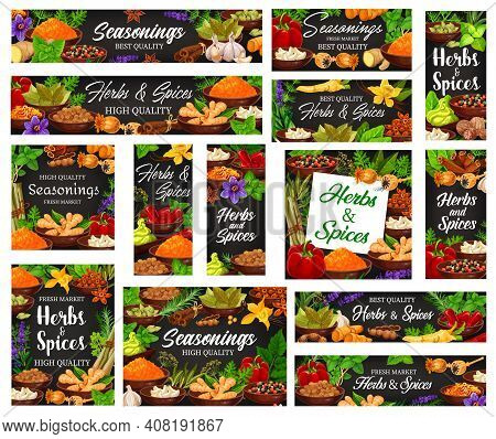 Seasonings, And Aromatic Herbs Banners. Turmeric And Ginger, Peppercorn, Paprika And Chilli Peppers,
