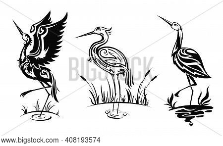 Heron Or Wader Birds Vector Icons, Black Hern Silhouettes Stand In Swamp Water With Reeds. Egrets Wi