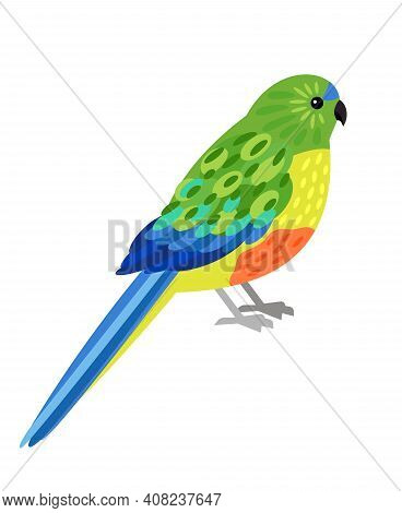 Tropical Parrot. Cartoon Beautiful Flying Australian Character, Bird With Beautiful Colorful Feather