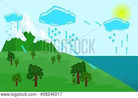 Water Cycle In Nature. Circulation Cycle And Water Condensation. Earth Hydrologic Process Diagram. E