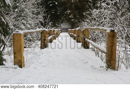 winter landscape with wooden bridge in forest