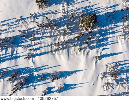Landscape Sheregesh Snow Covered Pine Forest In Mountains During Winter Aerial Top View