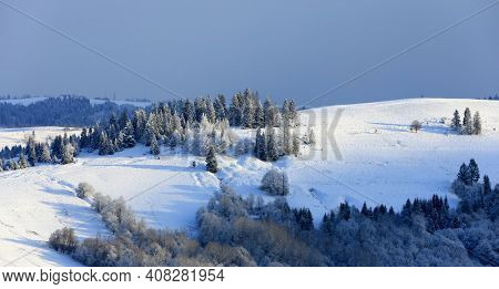 nice winter scene in Carpathian mountains, Ukraine