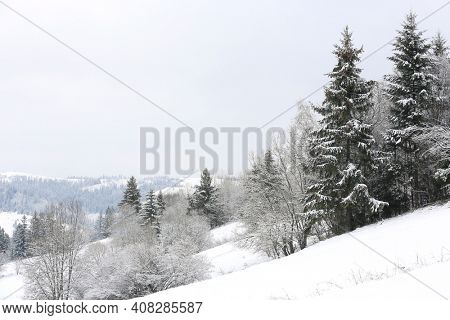 winter landscape with forest on mountain slope