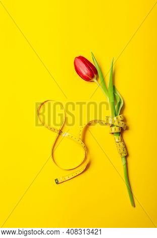 Vertical Postcard With One Red Tulip And Number Eight On A Yellow Background. International Woman Da
