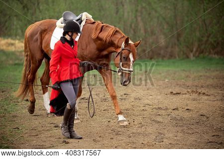 Beautiful Woman Jockey Rider With Brown Horse Outdoors