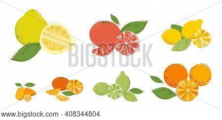 Set Of Citrus Fruits. Ripe Juice Vitamin Fruits: Pomelo, Grapefruit, Lemon, Oranges, Lime, Mandarins