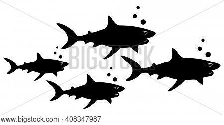 School of Sharks Family Friends Swimming Together Isolated on White with Clipping Path