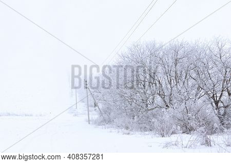 Trees And Electric Poles In Winter . Non Urban Scenery In February