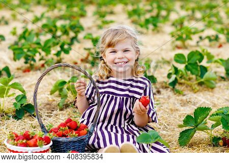 Happy Little Toddler Girl Picking And Eating Strawberries On Organic Berry Farm In Summer, On Warm S