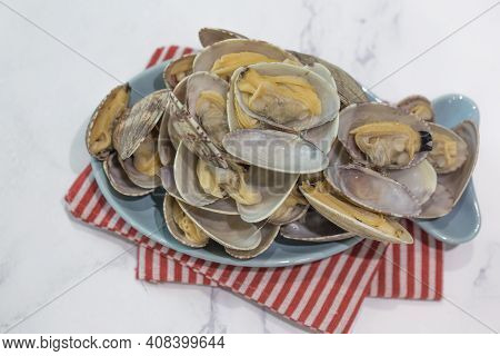 Fresh Surf Clam On A White Background