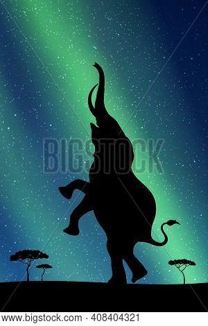 Standing Elephant At Night. Animal Silhouette. Green Aurora Borealis