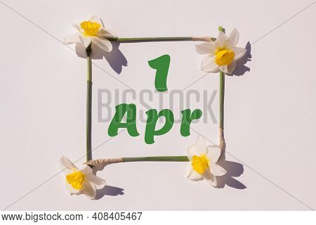 April 1rd. Day 1 Of Month, Calendar Date. Frame From Flowers Of A Narcissus On A Light Background, P