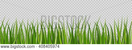 Green Grass. Lawn For Field. Sprouts Of Grass. Spring Grassland For Football. Green Plant On Meadow