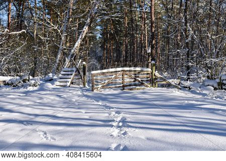 Wooden Stile And A Gate In The Woods In Winter Season