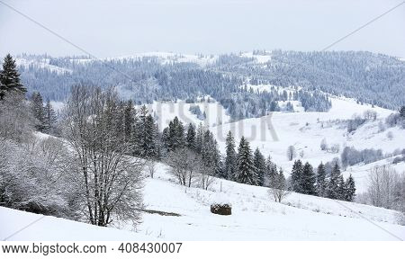 winter in carpathian mountains, Ukraine