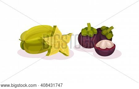 Ripe Exotic Fruits With Carambola And Mangosteen Vector Set