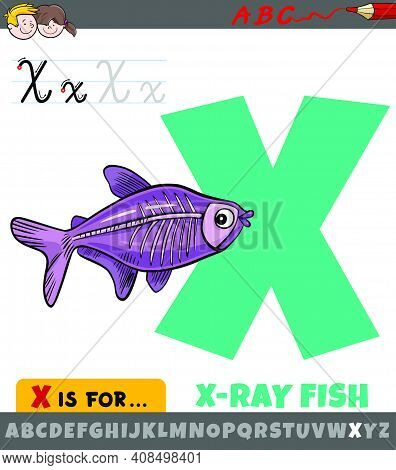 Educational Cartoon Illustration Of Letter X From Alphabet With X-ray Fish Animal Character For Chil