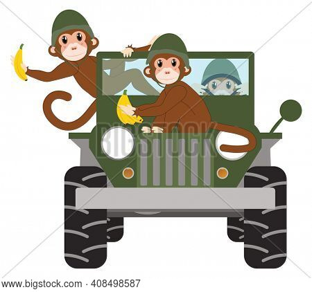Funny Military Monkeys with Bananas in Military Jeep Isolated on White with Clipping Path