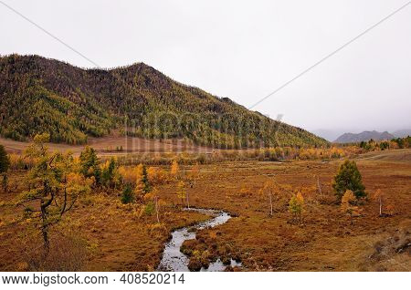 A Picturesque Valley With A Flowing Stream Surrounded By High Mountains Overgrown With Coniferous Fo