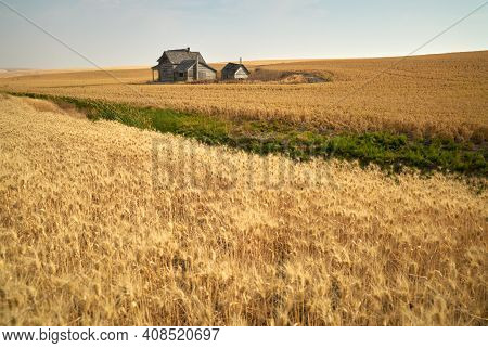 Rustic Abandoned Farmhouse. Old Abandoned Farm Buildings On Agricultural Land.